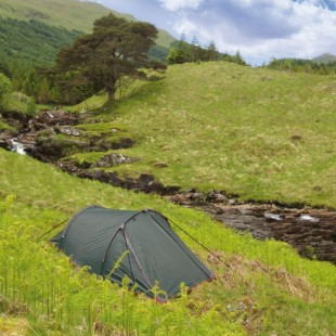 Cort Highlander Blackthorn 24